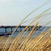 Drei Inselbäder laden zum Bade: Verbringen Sie einen herrlichen Ostsee-Urlaub auf Usedom